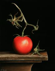 Tomato with branch by Wijnand Warendorf