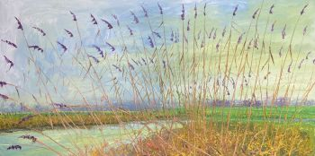Groot Riet 20A by Gertjan Scholte-Albers
