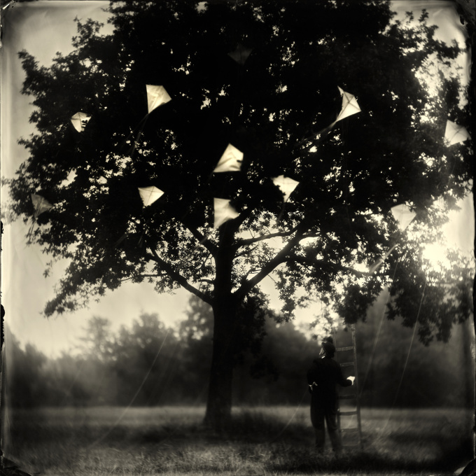 The Kite Runner by Alex Timmermans