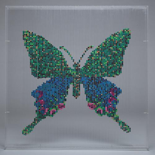 Butterfly by Natasja van der Meer