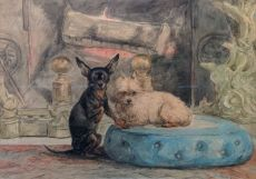 The dogs of Marie-Henriette, the Queen of Belgium by Henriëtte Ronner-Knip
