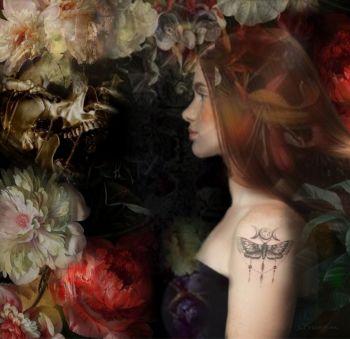 ASTRAY by Christine Fokkelman