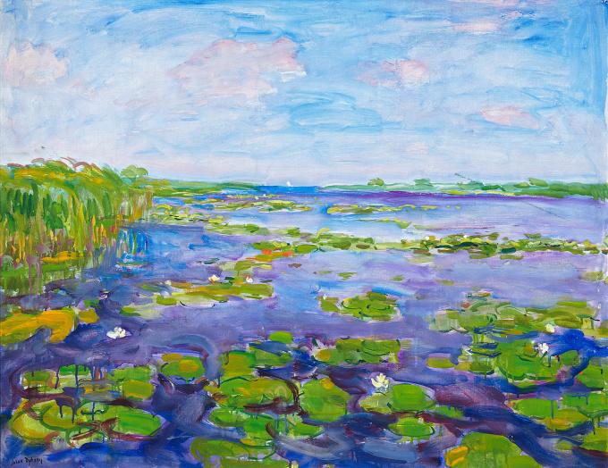 Meer met waterlelies by Johan Dijkstra