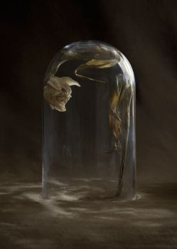Still Here - Holding Back by Suzanne Jongmans