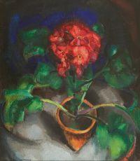 Flowers by Wim Schumacher