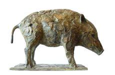 Wildzwijn jong by Coba Koster