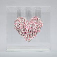 Soft Hearted by Natasja van der Meer