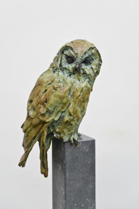 Tawny owl by Jacqueline van der Laan