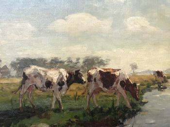 Cows on the waterfront by Fedor van Kregten