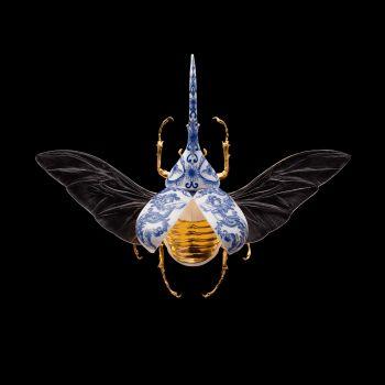 Anatomia Blue Heritage - Hercules Beetle Open Wings by Samuel Dejong