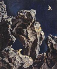 Moth and basalt by Lodewijk Bruckman