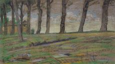 Tree lane by Maurits van der Valk