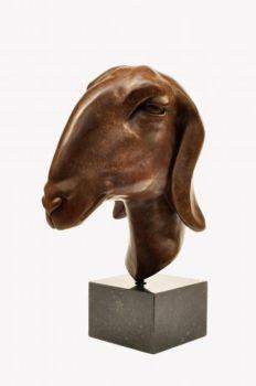 Nubian goat by Renée Marcus Janssen