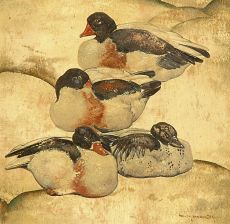 Four ducks by Willem van den Berg