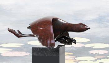 Opvliegende meerkoet by Evert den Hartog