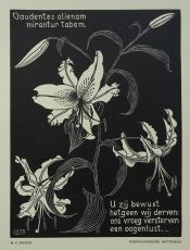 Flowers by Maurits Cornelis Escher