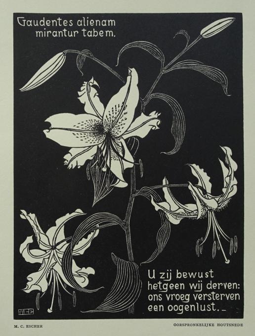 Flowers by Maurits Cornelis Escher