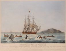 South Sea Whale Fishery by Huggins, William John