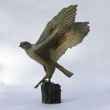 L'envol du faucon by Madeleine van der Knoop