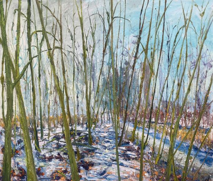 W-sneeuw by Gertjan Scholte-Albers