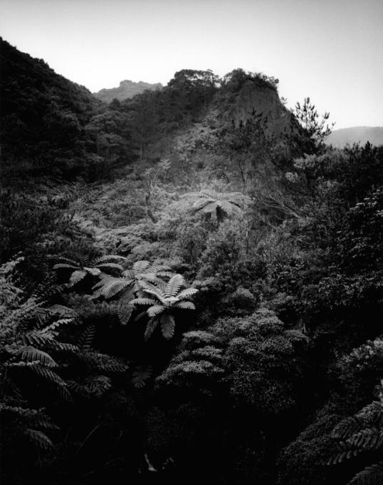 The Nurturing Island by Emily Bates