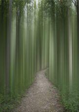 Among The Spirits by Ellen Jantzen