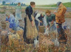 The potato harvest by Harmen Meurs