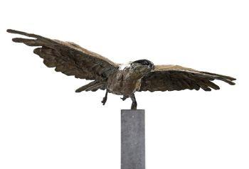 Flying Buzzerd by Jacqueline van der Laan