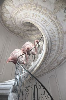 Golden Ratio by Cheraine Colette